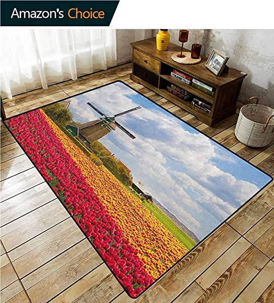 YucouHome Windmill Traditional Area Rug Living Room Abundant European Field Wild Flora Countryside Outdoors Clouds Mill Rustic Print Fashionable High Class Living Dinning Room 2 5 X 9 Multicolor