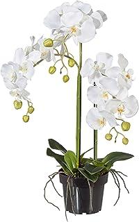 Kunstblume PHALENOPSIS 1017101-48 ORCHIDEENZWEIG 76 cm Orchidee in weiß CREME