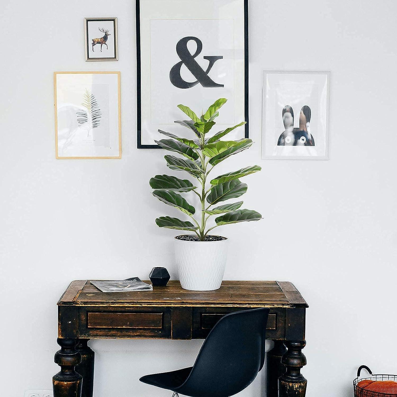 Ferrgoal K/ünstliche Pflanze Geigenblatt Feigenbaum 56cm Kunstpflanzen im Seegraskorb Tropical Hawaii Gr/ün Plastik Pflanze f/ür K/üche Schlafzimmer B/ürogebrauch Garten Hochzeit Deco 1 Pack