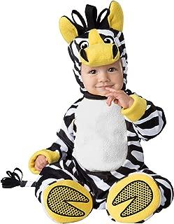zany zebra costume