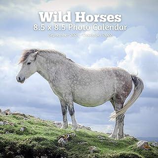 Wild Horses 8.5 X 8.5 Calendar September 2021 -December 2022: Monthly Calendar with U.S./UK/ Canadian/Christian/Jewish/Mus...