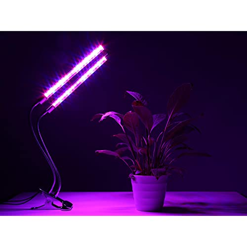 Fluorescent Lights For Growing Plants Amazon Com