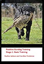 Positive Gundog Training Stage 1: Basic Training