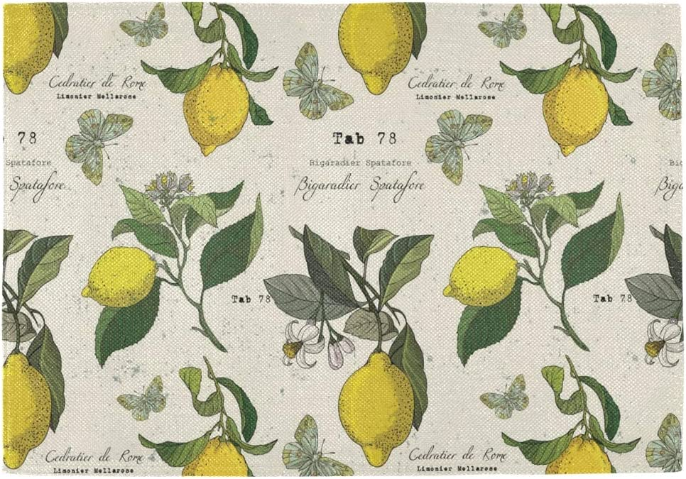 Philadelphia Mall Bolaz Lemon and 4 years warranty Butterflies Placemats Vintage Table Mats Place