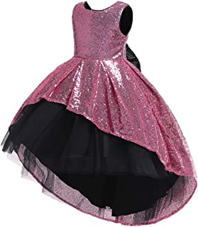 Zhhlaixing Kids Girl's Maxi Tutu Tulle Dress Organza Empire Waist Flower Dress Mesh Satin Communion Gowns 2-14 Years for Wedding Juniors Bridesmaid Birthday Prom Party Ball Gowns