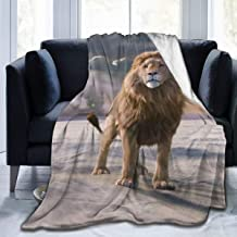 BHUIA Lion Movie The Chronicles of Narnia The Lion The Witch and The Wardrobe Ultra-Soft Micro Fleece Blanket Flannel Fleece Soft and Warm Plush Bed Couch Living Room 50