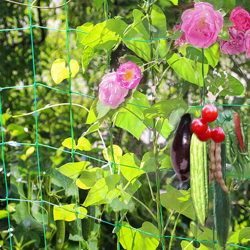 Bakulyor Garden Trellis Netting, Trellis Nets for Climbing Plants Outdoor, Net for Growing Vine Pea Bean Tomato Vegetable Flower, 4