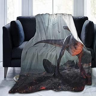 SLHFPX Micro Fleece Plush Soft Baby Blanket Ancient Dinosaur Fluffy Warm Toddler Bed/Crib Blanket Lightweight Flannel Daycare Nap Kids Sleeping Tummy Time Throw Blanket Girls Boy 50