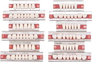 Wecando 84 Pcs Dental Synthetic Resin Tooth Denture 3 Sets False Teeth for Halloween Horror Teeth 23 A2