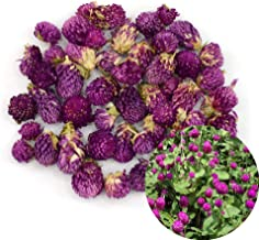 Epoxy Resin Jewelry Craft DIY Art Crafts 12 Pieces Real Godetia Pressed Flower Natural Dried Flowers Plant Specimen Filler for Scrapbook deep Purple Card