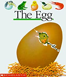 The Egg: A First Discovery Book
