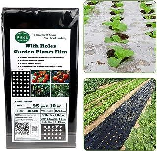 Amazon.es: Lacyie - Jardinería: Jardín