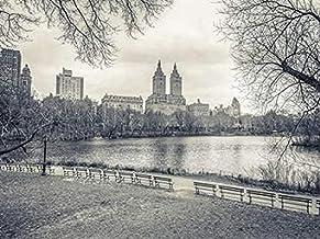 Central park with Manhattan skyline, New York Poster Print by Assaf Frank (9 x 12)