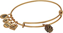 Charity By Design Pinecone Bangle
