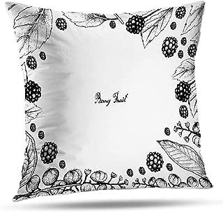 Kutita Americana Decorative Pillow Covers, Fruits Frame Sketch American Americana and White Throw Pillow Decor Bedroom Livingroom Sofa 18X18 inch