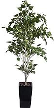フェイクグリーン 大型 白樺 シラカバ 160cm 黒鉢 SC/CT触媒加工済[ka-tb1823]
