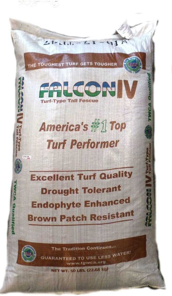 SeedRanch Falcon IV Turf Type 35% OFF Tall Seeds Grass Columbus Mall 5 lbs. Fescue -
