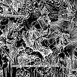 Songtexte von Skullflower - Strange Keys to Untune Gods' Firmament