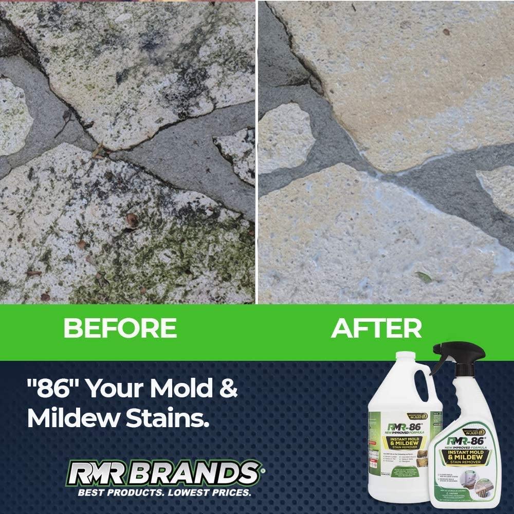 Best Black Mold Remover