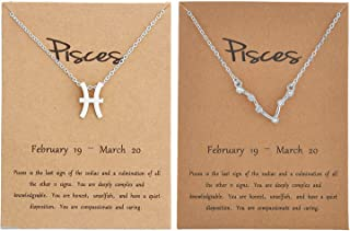 choice of all 2Pcs Silver Zodiac Necklace for Women,12 Constellation Zodiac Pendant Necklace Astrology Necklace with Messa...