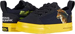 National Geographic Old Skool Elastic Lace (Infant/Toddler)