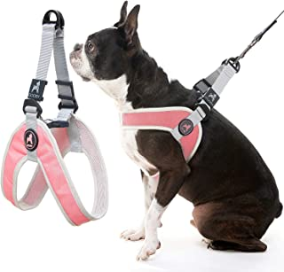 Gooby Dog Harness - Pink, Small - Simple Step-in Harness III Small Dog Harness Scratch Resistant - On The Go Breathable In...