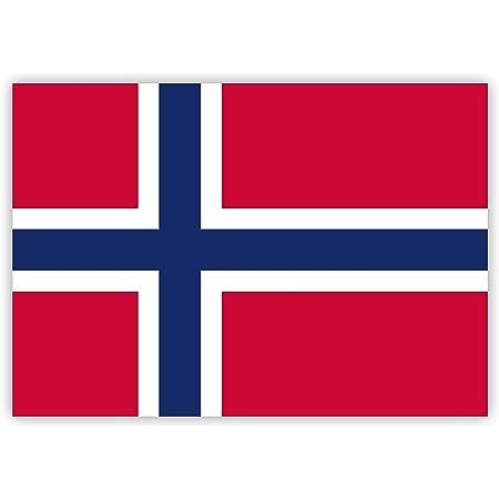 10 X Aufkleber Norwegen Flagge 7 4 X 5 2 Cm Für Innen Und Außen Auto