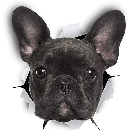 Winston Bear 3d Hund Aufkleber 2er Pack Schwarz Französische Bulldogge Aufkleber Für Wand Kühlschrank Frenchie Aufkleber Küche Haushalt