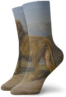 tyui7, Hermosos calcetines de compresión antideslizantes de pintura al óleo de león calcetines deportivos acogedores de 30 cm para hombres, mujeres y niños