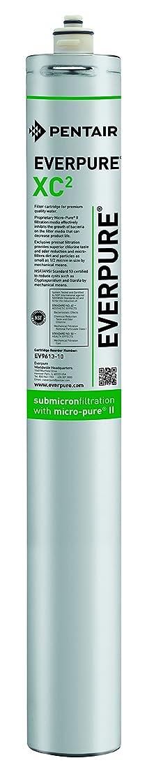 迫害モナリザまとめるEverpure EVERPURE-XC2 Replacement Filter Cartridge EV9613-10