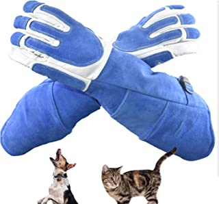 厚みのある抗咬傷性安全手袋 ペットグローブ お手入れ手袋 動物の訓練飼育用 犬猫ペット咬傷アンチスクラッチ保護手袋 1ペア (Color : Blue, Size : L)