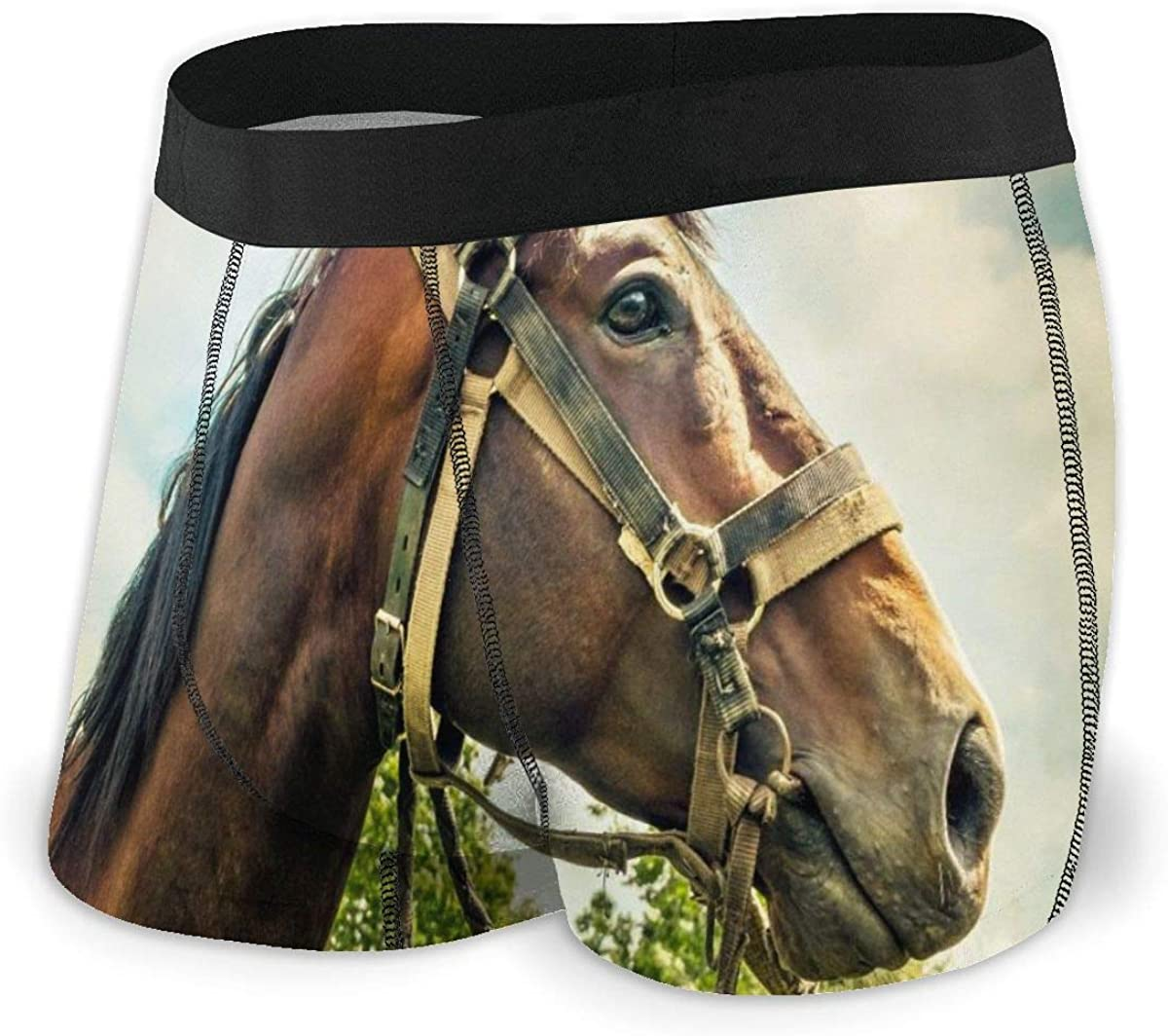 Randolph Wordsworth Mens Boxer Briefs Stroking The Horse's Face Breathable Underwear
