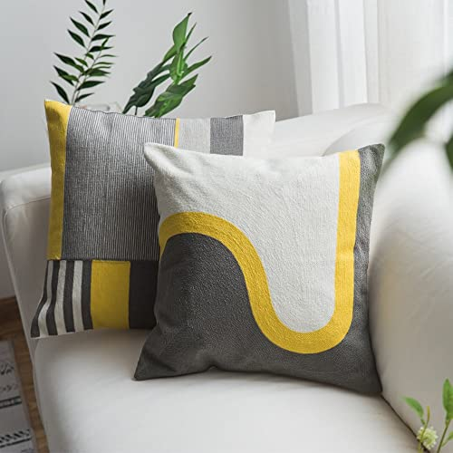 Modern Decorative Pillows: Amazon.com