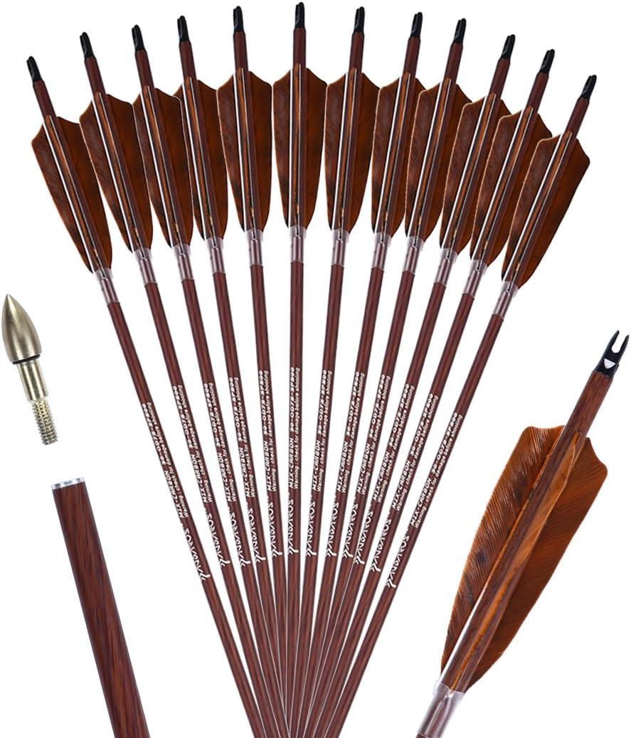 PANDARUS Archery 31-Inch Carbon Hunting Ranking TOP8 Fe New item Arrows Turkey 4-Inch