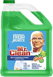mr clean multi purpose cleaner with gain