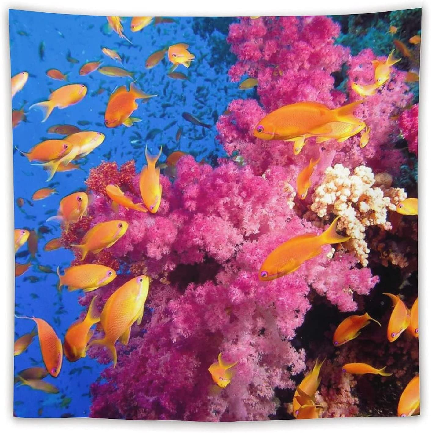 Ocean Underwater Golden Shoal of Tropical Coral Purple Fish Don't miss Max 90% OFF the campaign