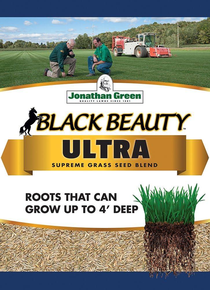 Amazon Com Jonathan Green 10322 Black Beauty Ultra Grass Seed Mix 7 Pounds Grass Plants Garden Outdoor