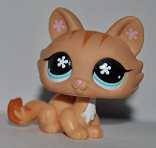 Tabby Kitten #649 (Orange, Blue Eyes) - Littlest Pet Shop (Retired) Collector Toy - LPS Collectible Replacement Single Figure - Loose (OOP Out of Package & Print)