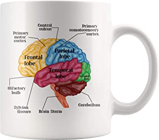 Psychology Brain Mug Gift For Neurologist Psychologist 11 Ounce Science Themed Mugs Human Anatomy Teachers Students Gift Ideas
