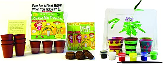 TickleMe Plant Deluxe Greenhouse Kit with 6 Color Paint Set for Kids with 10 Fun Activities. Grow The House Plant That Closes its Leaves & Lowers it Branches When Tickled. Great Science Activity