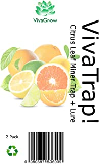 VivaTrap! Citrus Leaf Miner Trap & Lure (2 Pack)