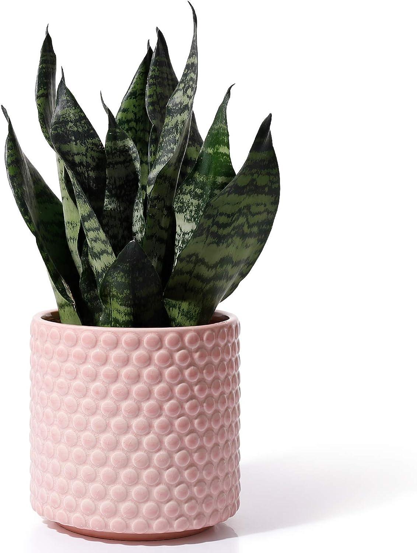 Planters Pots for Plants Indoor Factory outlet - 6 Inch POTEY Ceramic Vi Super intense SALE 054301