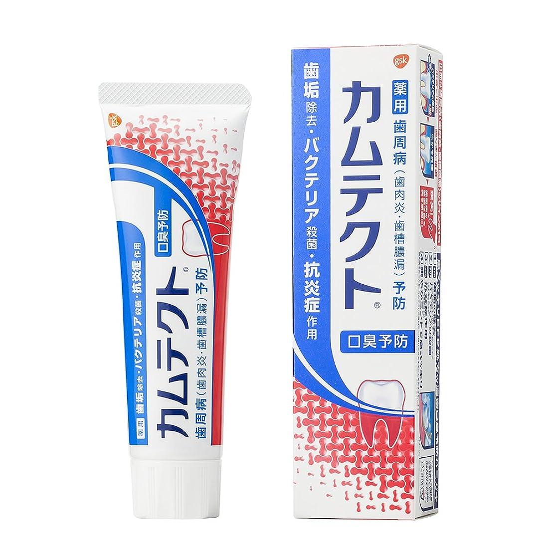 メイト花定期的[医薬部外品]カムテクト 口臭予防 歯周病(歯肉炎?歯槽膿漏) 予防 歯みがき粉 105g