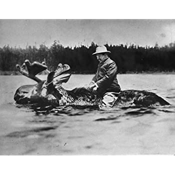 Amazon.com : Theodore Teddy Roosevelt Riding a Moose Photo Poster Art Photo American Presidents Posters Artwork 11x14 : Everything Else