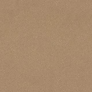 Bevel-edge Wilsonart Sheet Laminate 4 x 8 - Natural Tigris