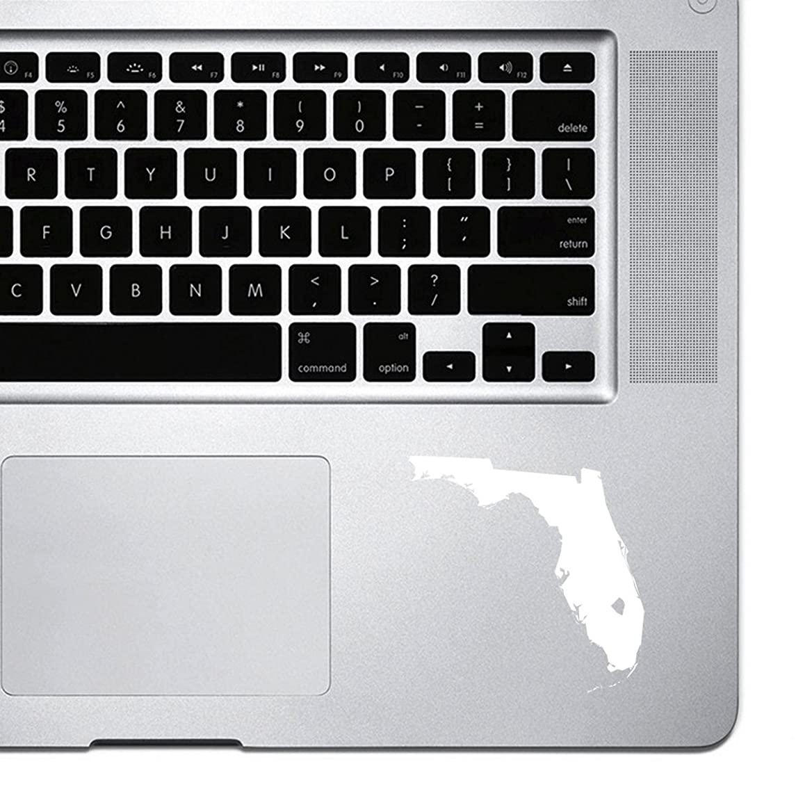 StickAny Palm Series Florida FL Sticker for Macbook Pro, Chromebook, and Laptops (White)
