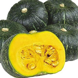 国華園 大特価 メキシコ産他 かぼちゃ 10kg