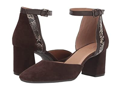 Aerosoles Honor System (Dark Brown Suede) Women
