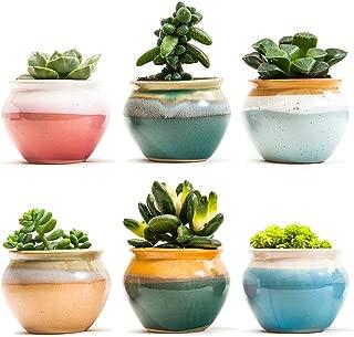 Sun-E Ceramic Succulent Plant Pot Flowing Glaze Black&White Base Serial Set Cactus Plant Pot Flower Pot Container Planter with Hole(6 in Set) 2.75 Inch