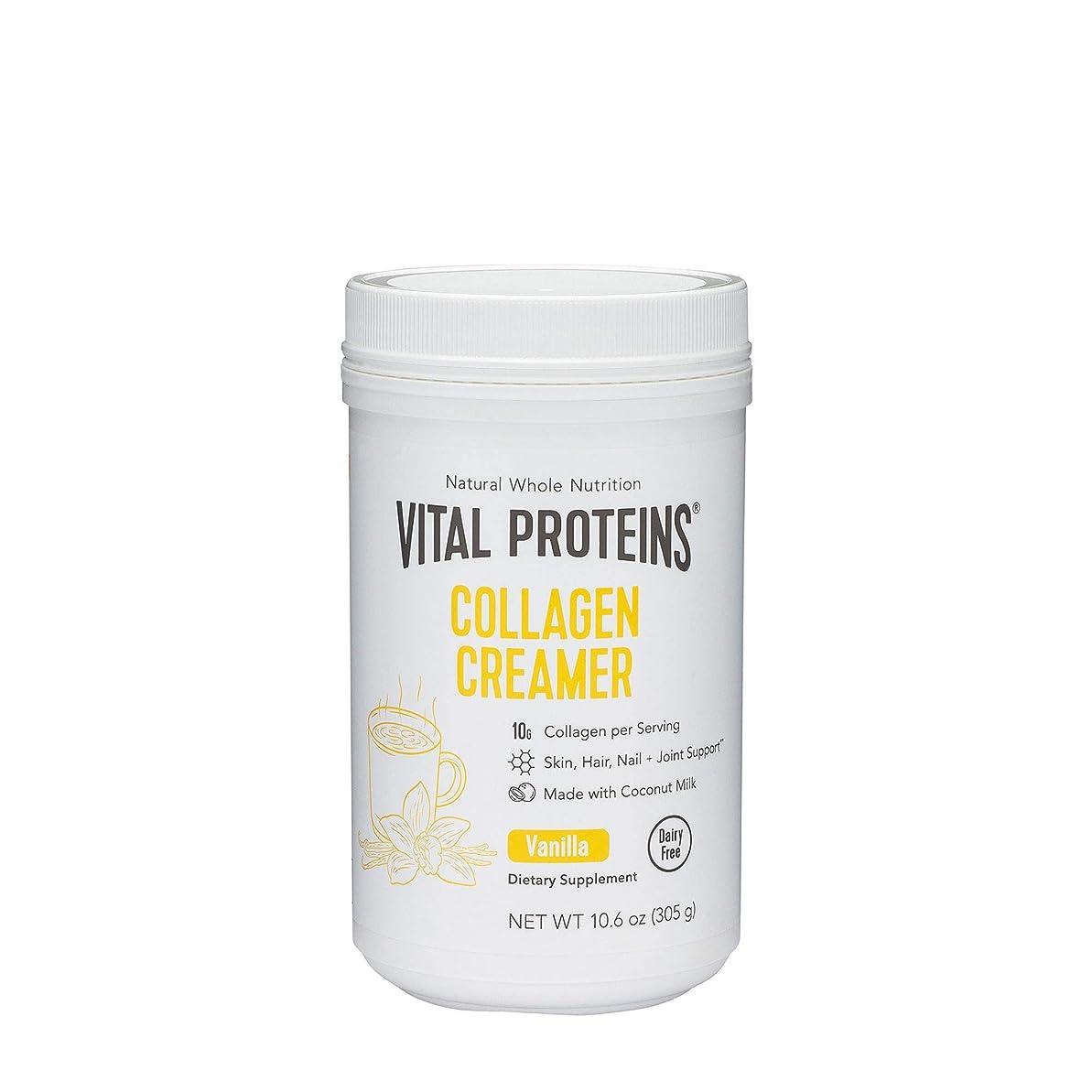 ほかにフルート時計プロテイン Vital Proteins Collagen Creamer 10.3 oz 293 g バニラ